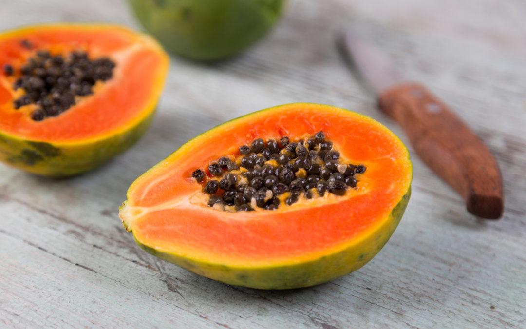 papaya fermentata benefici