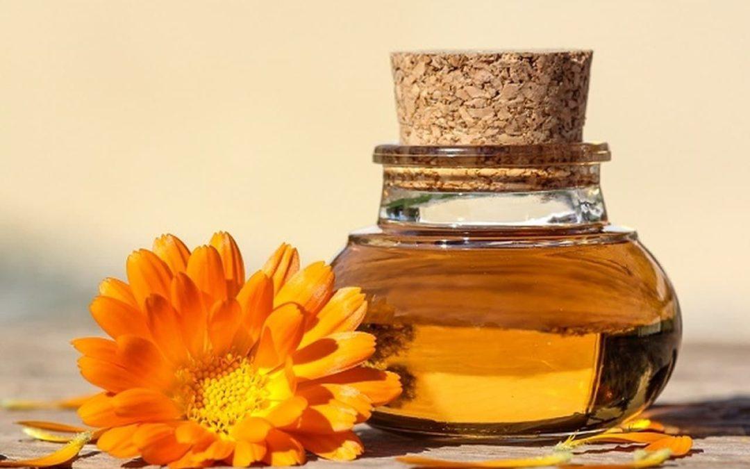 Olio di calendula proprietà ed uso