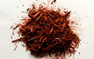 Legno di campeggio: tinta naturale anche per i capelli