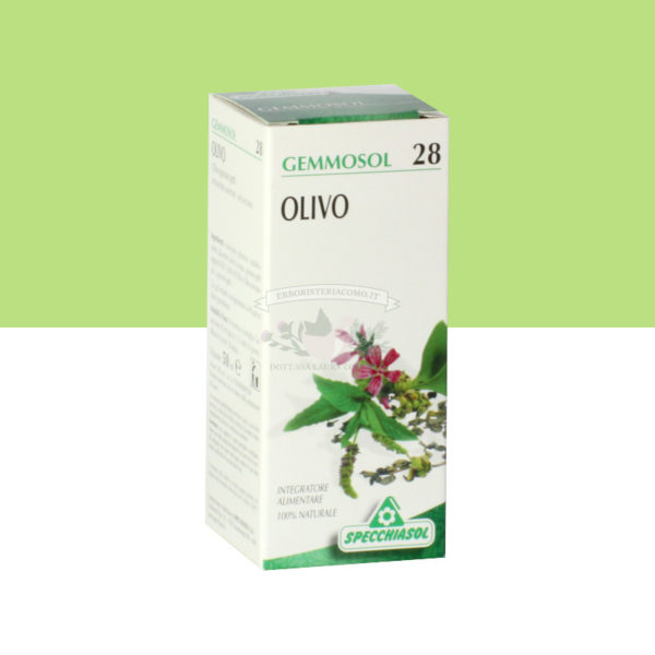 Gemmoderivato Olivo 50 ml
