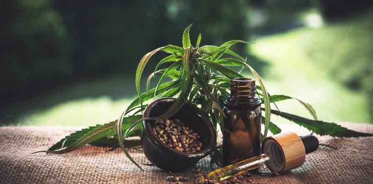 hemp oil use