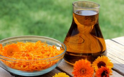 What is macerated oil used for