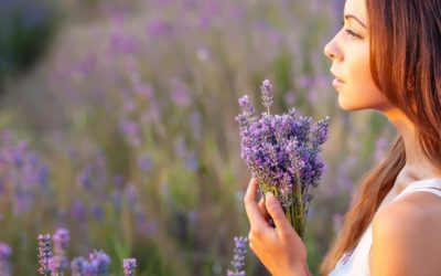 Essential oils: the action on the mind and mood