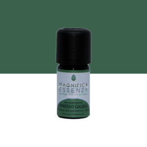 Cypress Essential Oil pure