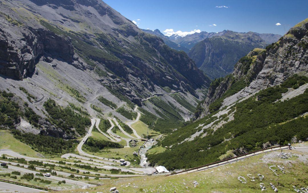 From Artemisia glacialis an Alps liqueur: Genepy